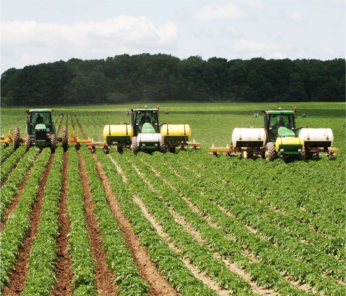 Three combines harvesting a field